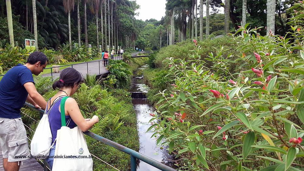 jardim botanico sao paulo
